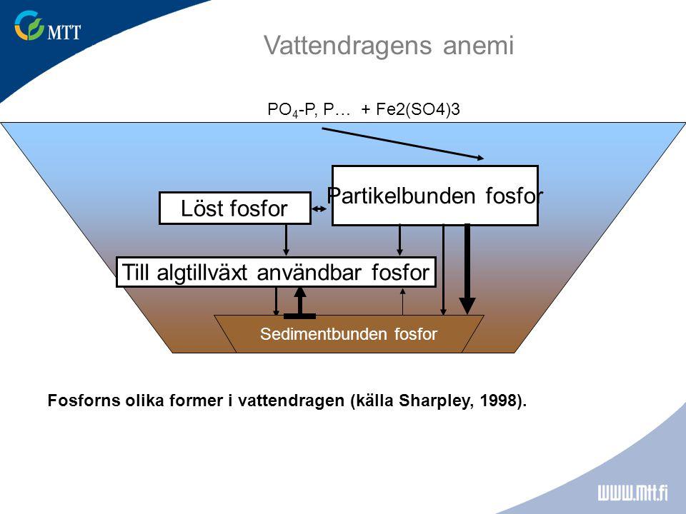 Vattendragens anemi Partikelbunden fosfor Löst fosfor