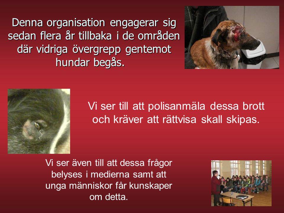 Denna organisation engagerar sig sedan flera år tillbaka i de områden där vidriga övergrepp gentemot hundar begås.