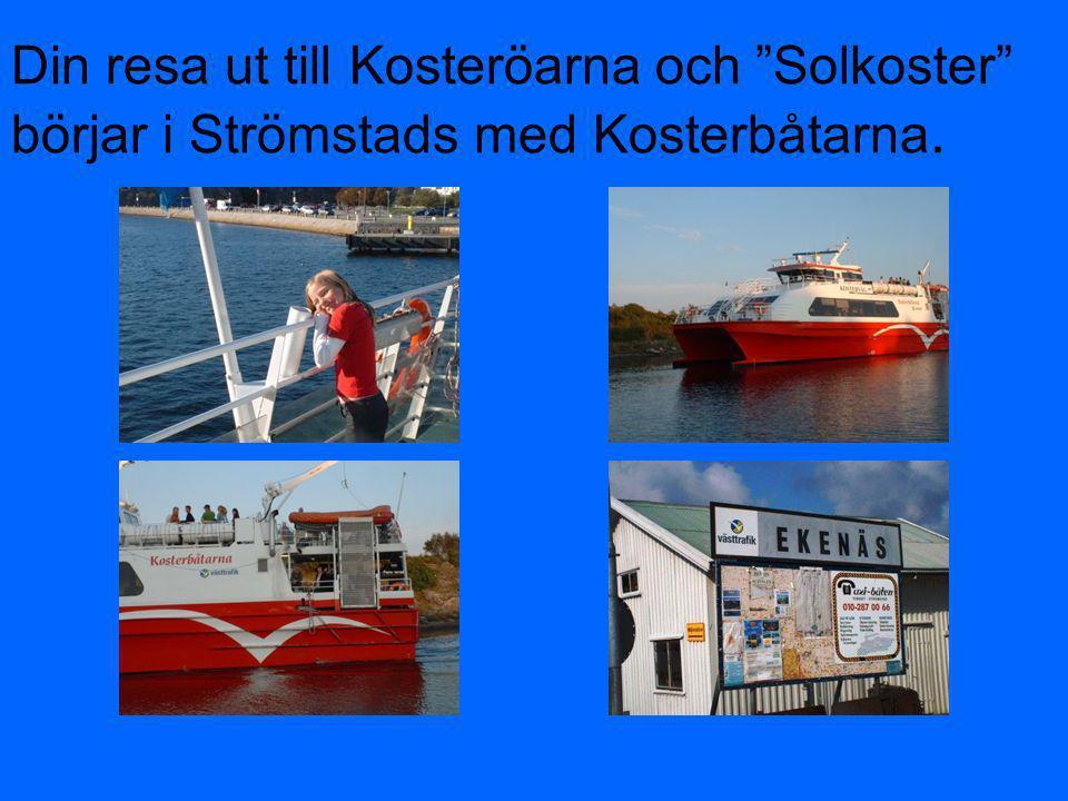 Din resa ut till Kosteröarna och Solkoster börjar i Strömstads med Kosterbåtarna.