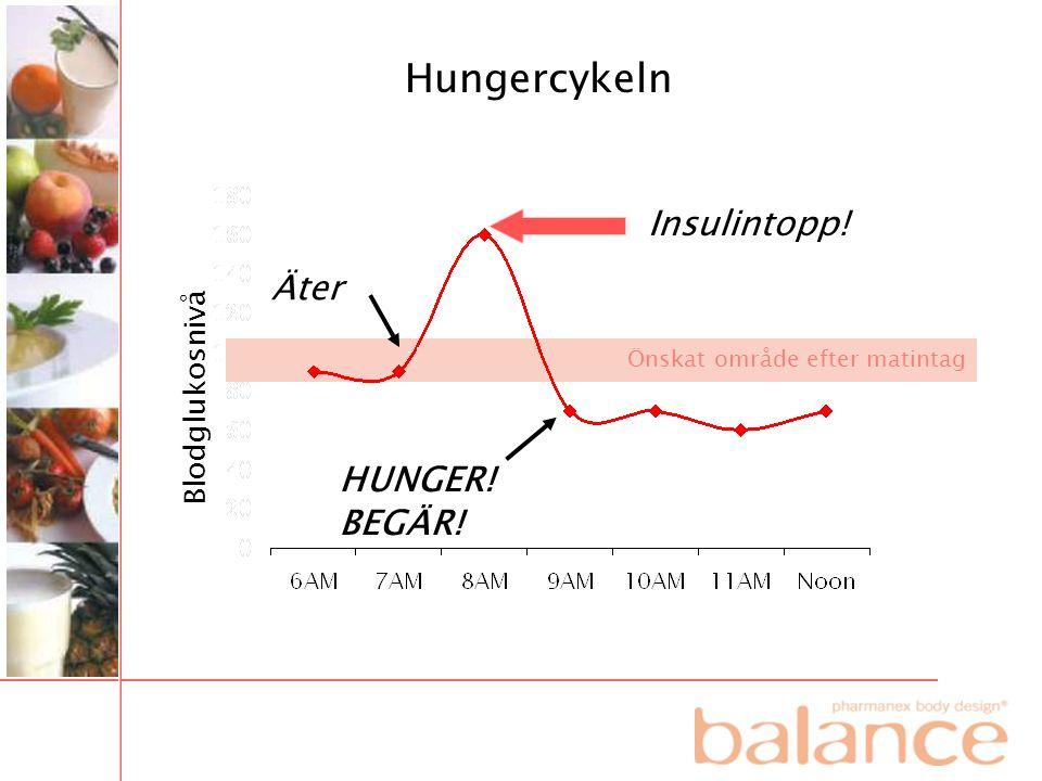 Hungercykeln Insulintopp! Äter HUNGER! BEGÄR! Blodglukosnivå