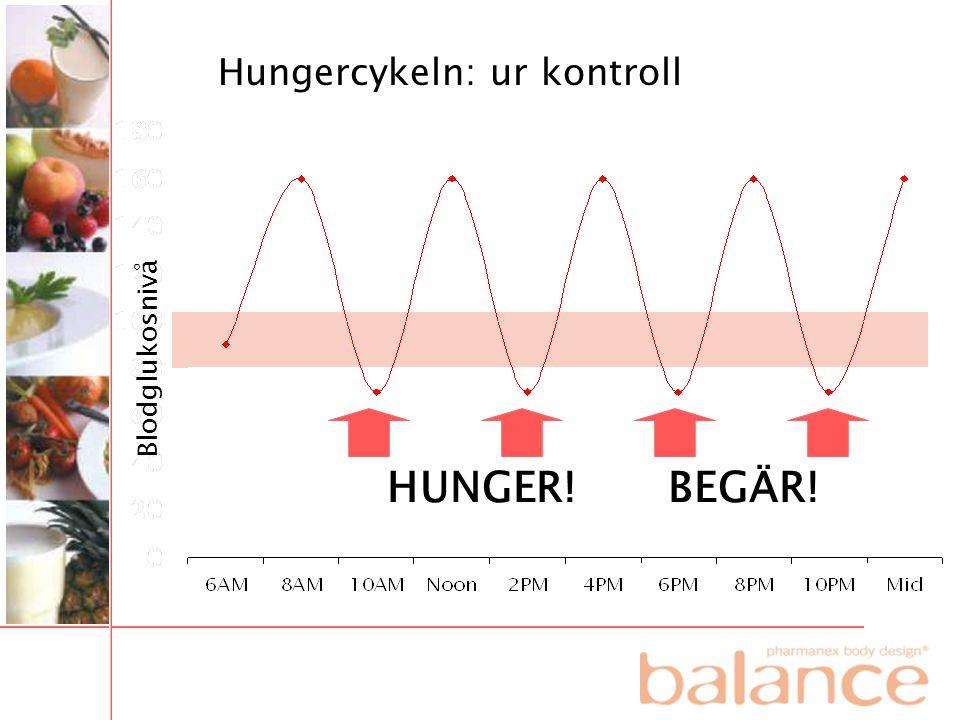 HUNGER! BEGÄR! Hungercykeln: ur kontroll Blodglukosnivå