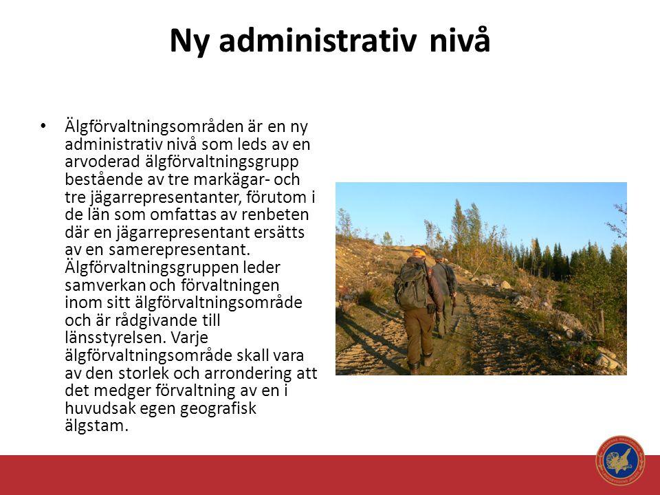Ny administrativ nivå