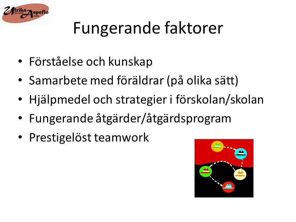Fungerande faktorer Förståelse och kunskap