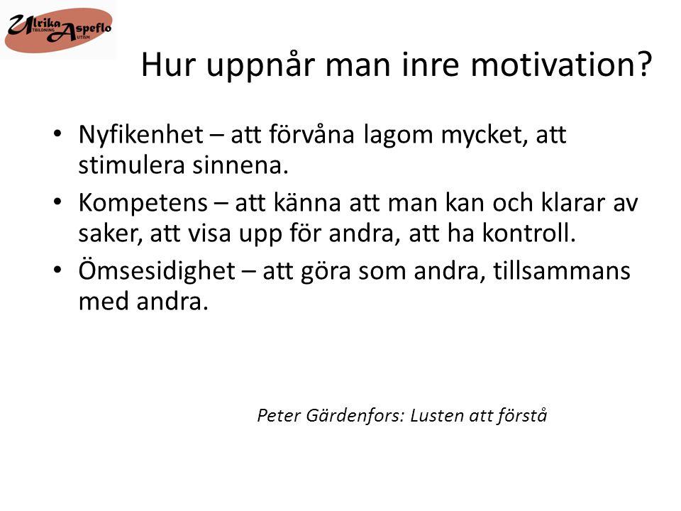 Hur uppnår man inre motivation