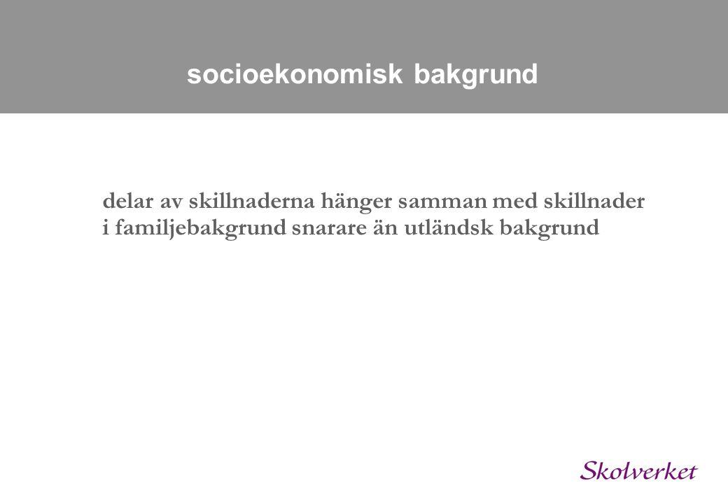 socioekonomisk bakgrund