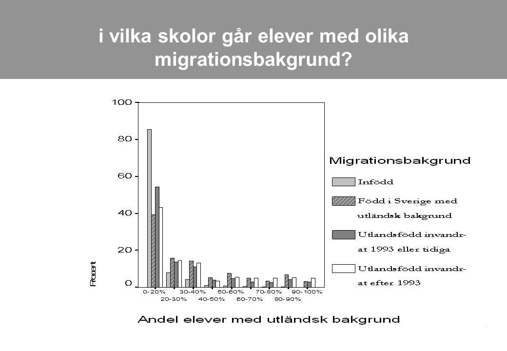 i vilka skolor går elever med olika migrationsbakgrund