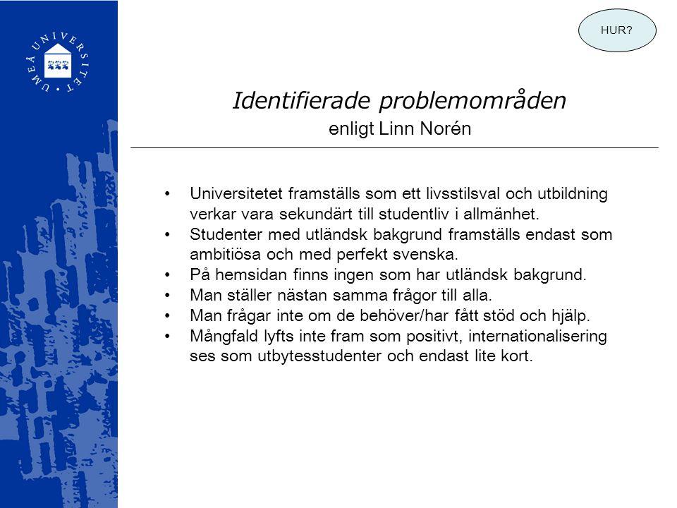 Identifierade problemområden enligt Linn Norén