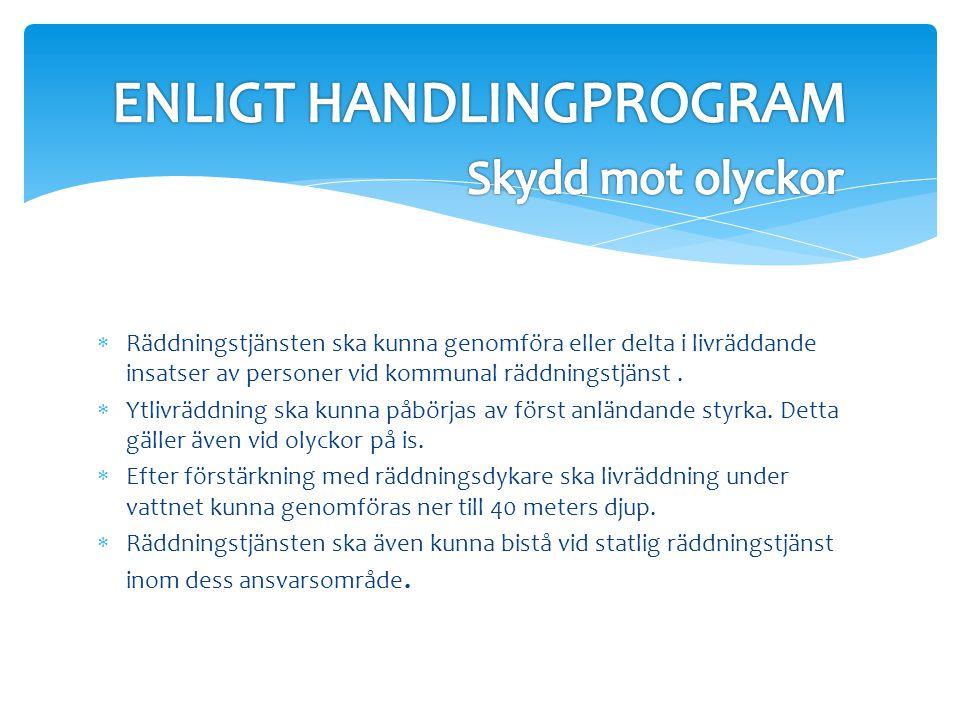 ENLIGT HANDLINGPROGRAM