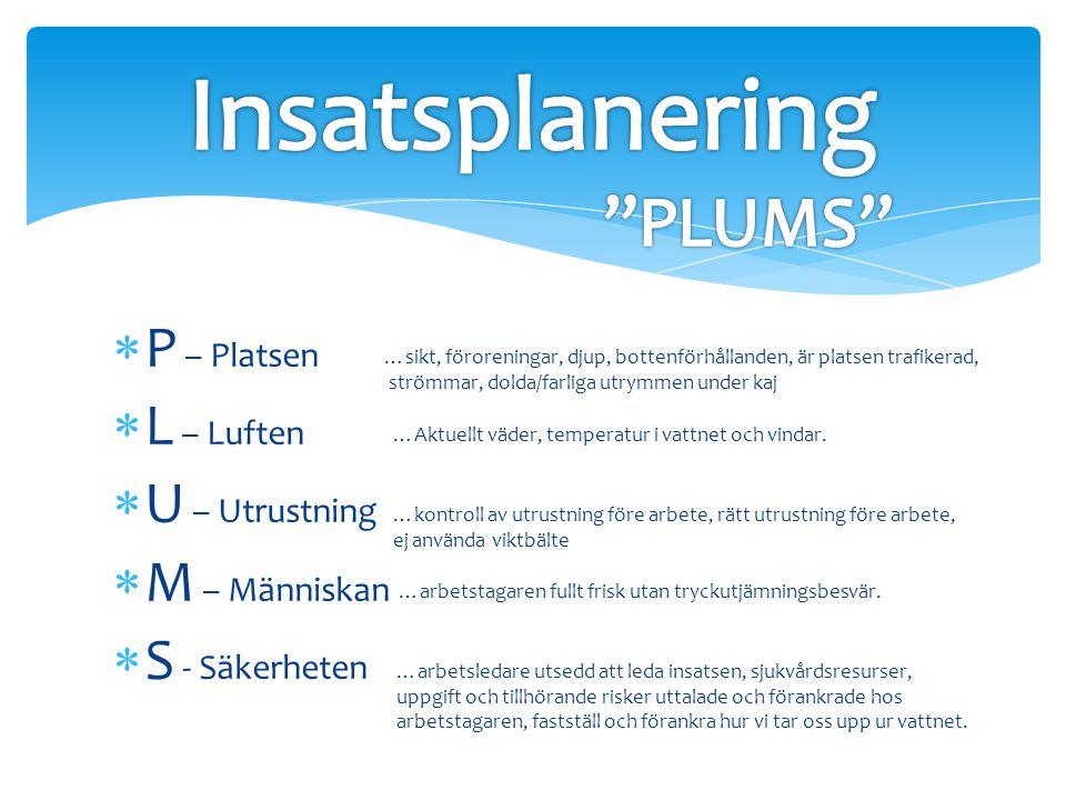 Insatsplanering PLUMS P – Platsen L – Luften U – Utrustning