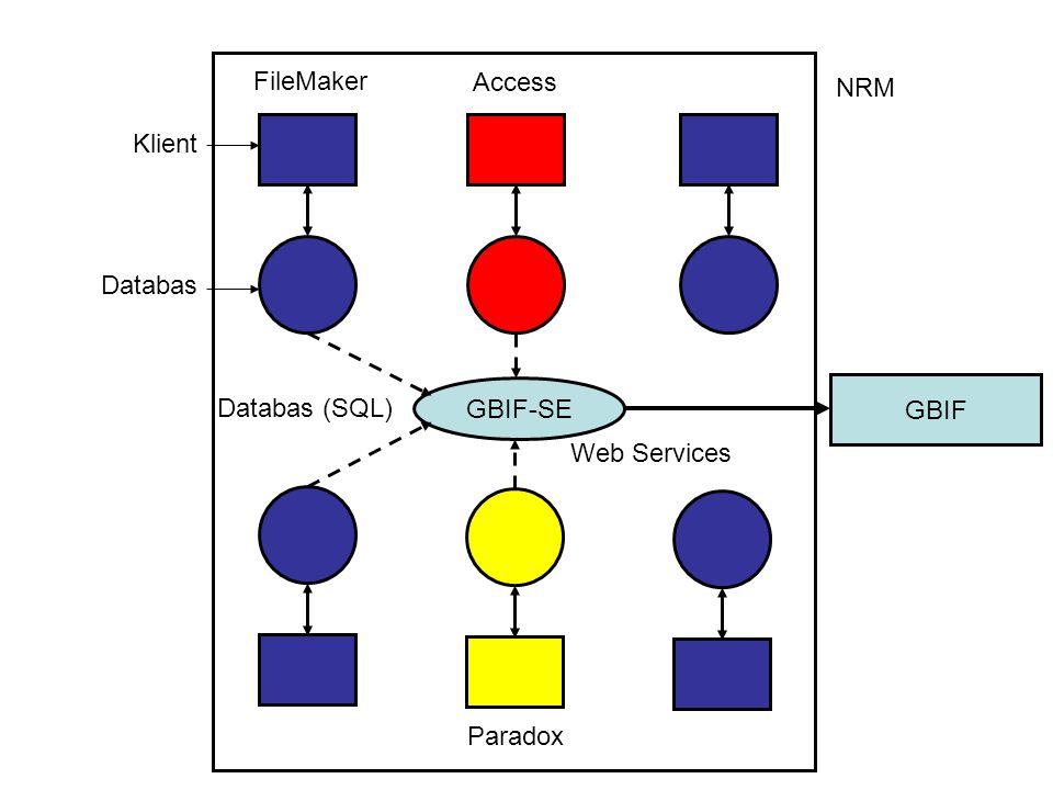 FileMaker Access NRM Klient Databas GBIF-SE GBIF Databas (SQL) Web Services Paradox