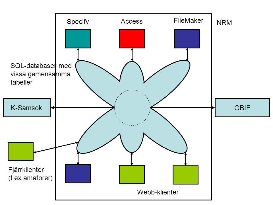 Specify Access. FileMaker. NRM. SQL-databaser med vissa gemensamma tabeller. K-Samsök. GBIF. Fjärrklienter.