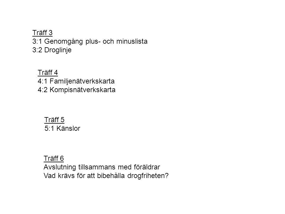 Träff 3 3:1 Genomgång plus- och minuslista. 3:2 Droglinje. Träff 4. 4:1 Familjenätverkskarta. 4:2 Kompisnätverkskarta.