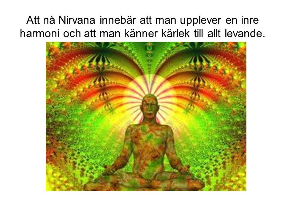 Att nå Nirvana innebär att man upplever en inre harmoni och att man känner kärlek till allt levande.