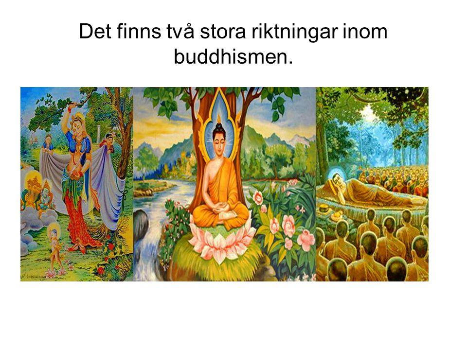 Det finns två stora riktningar inom buddhismen.