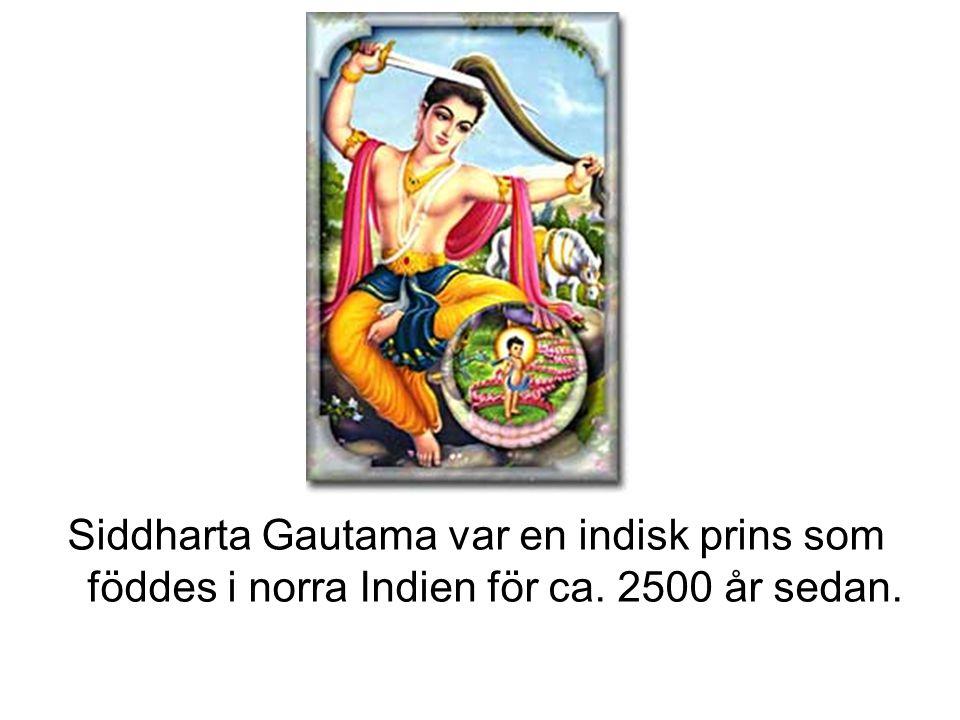 Siddharta Gautama var en indisk prins som föddes i norra Indien för ca