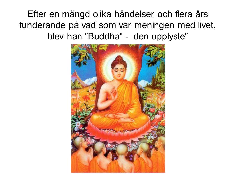 Efter en mängd olika händelser och flera års funderande på vad som var meningen med livet, blev han Buddha - den upplyste