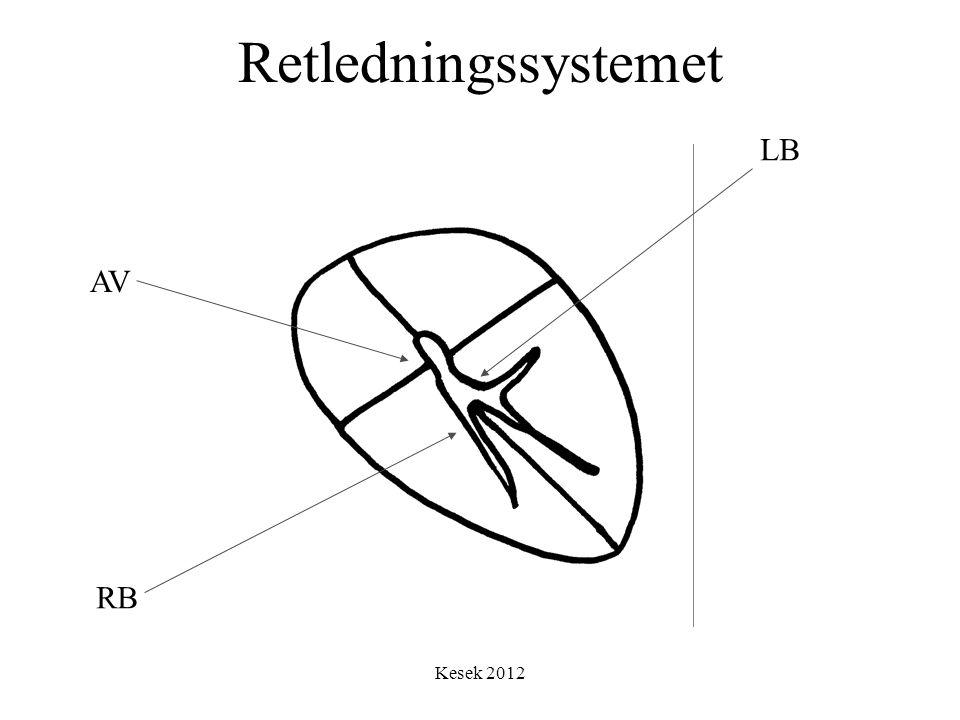 Retledningssystemet LB AV RB Kesek 2012