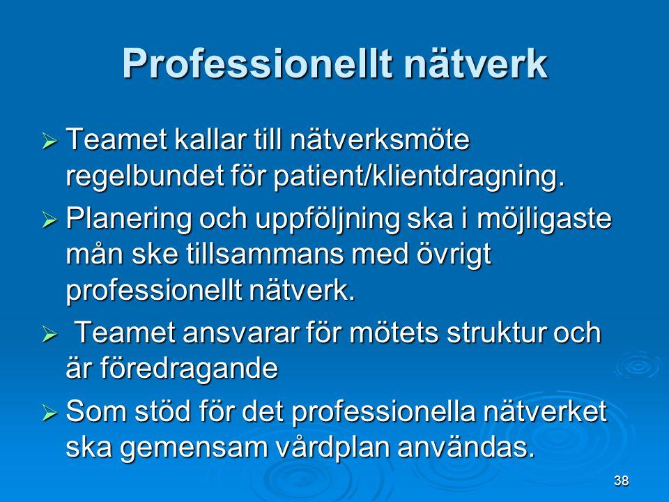 Professionellt nätverk