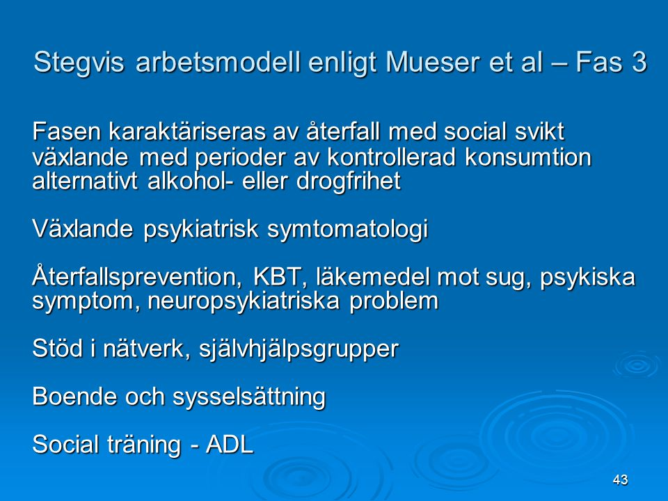 Stegvis arbetsmodell enligt Mueser et al – Fas 3