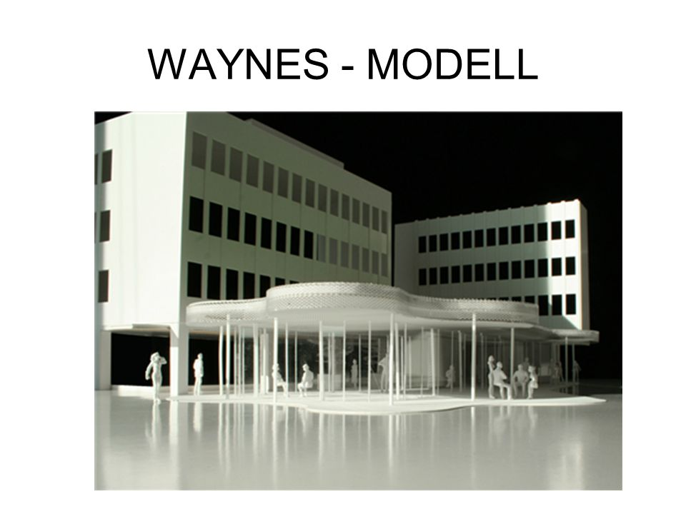 WAYNES - MODELL