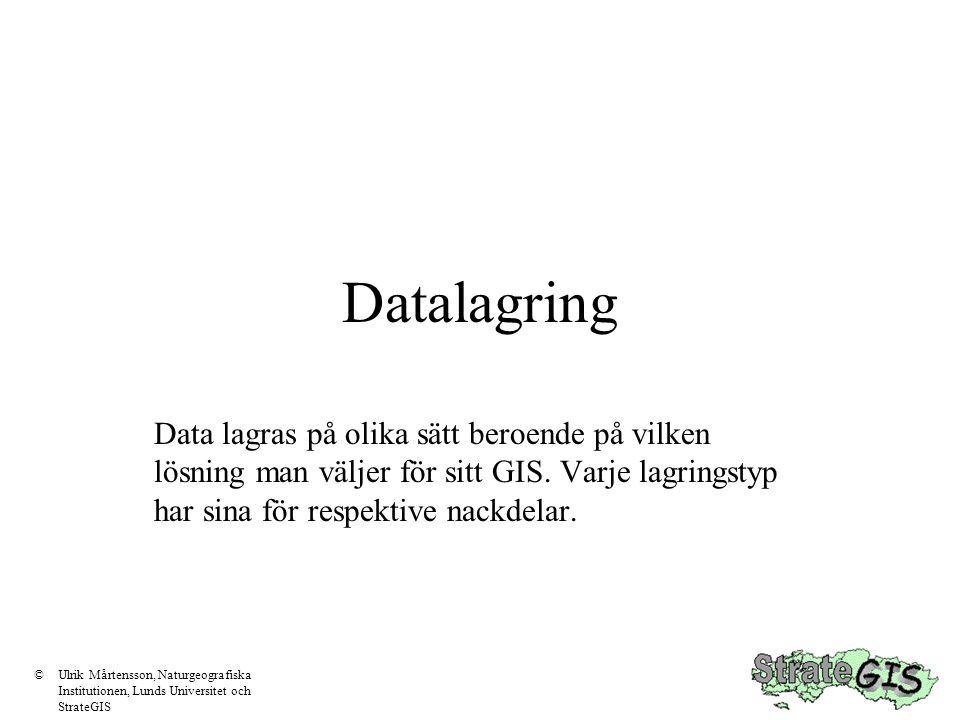 Datalagring Data lagras på olika sätt beroende på vilken lösning man väljer för sitt GIS. Varje lagringstyp har sina för respektive nackdelar.