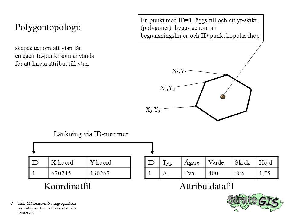 Polygontopologi: Koordinatfil Attributdatafil Länkning via ID-nummer