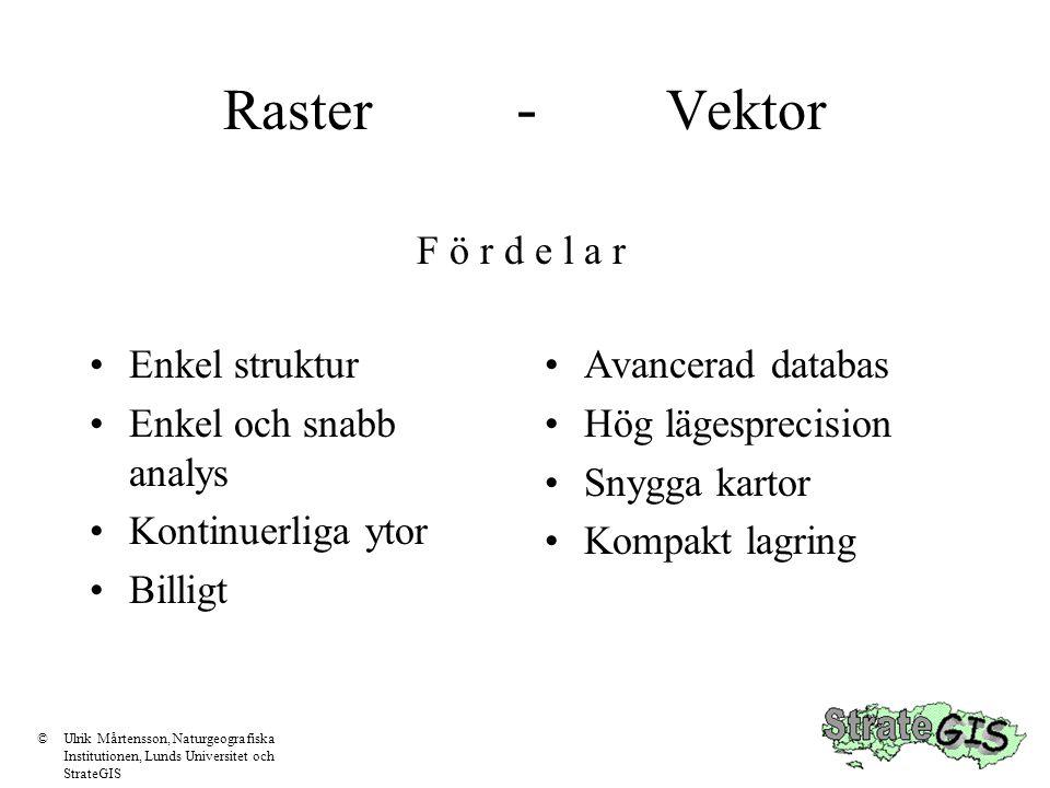 Raster - Vektor F ö r d e l a r Enkel struktur Enkel och snabb analys