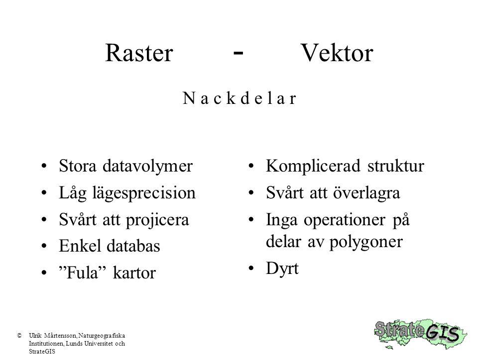 Raster - Vektor N a c k d e l a r Stora datavolymer Låg lägesprecision