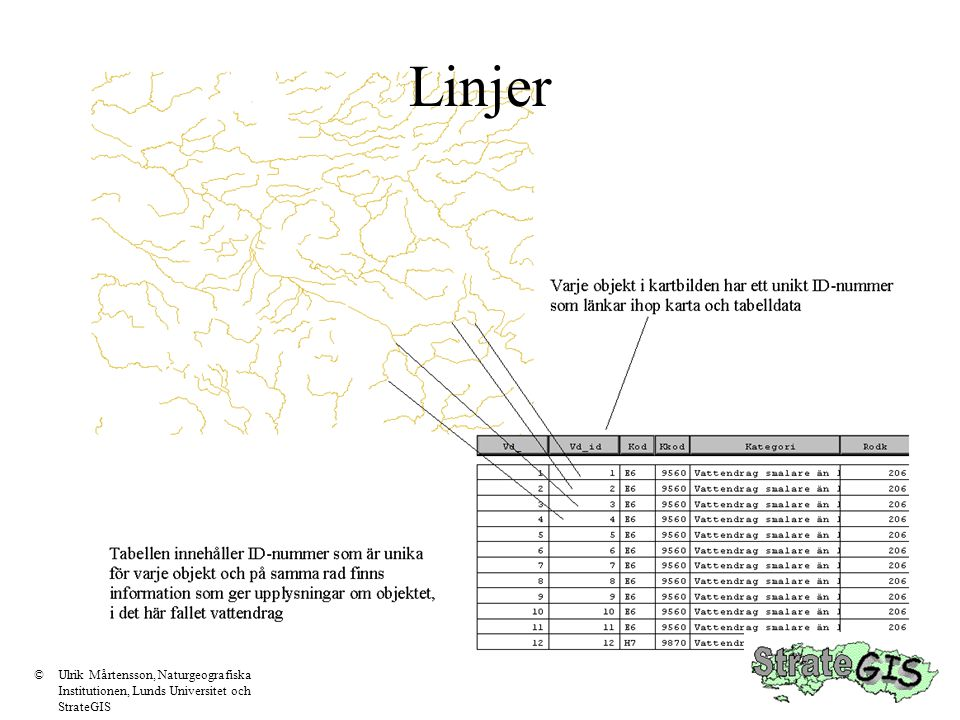 Linjer © Ulrik Mårtensson, Naturgeografiska Institutionen, Lunds Universitet och StrateGIS