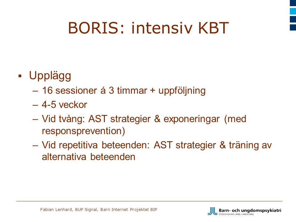 BORIS: intensiv KBT Upplägg 16 sessioner á 3 timmar + uppföljning