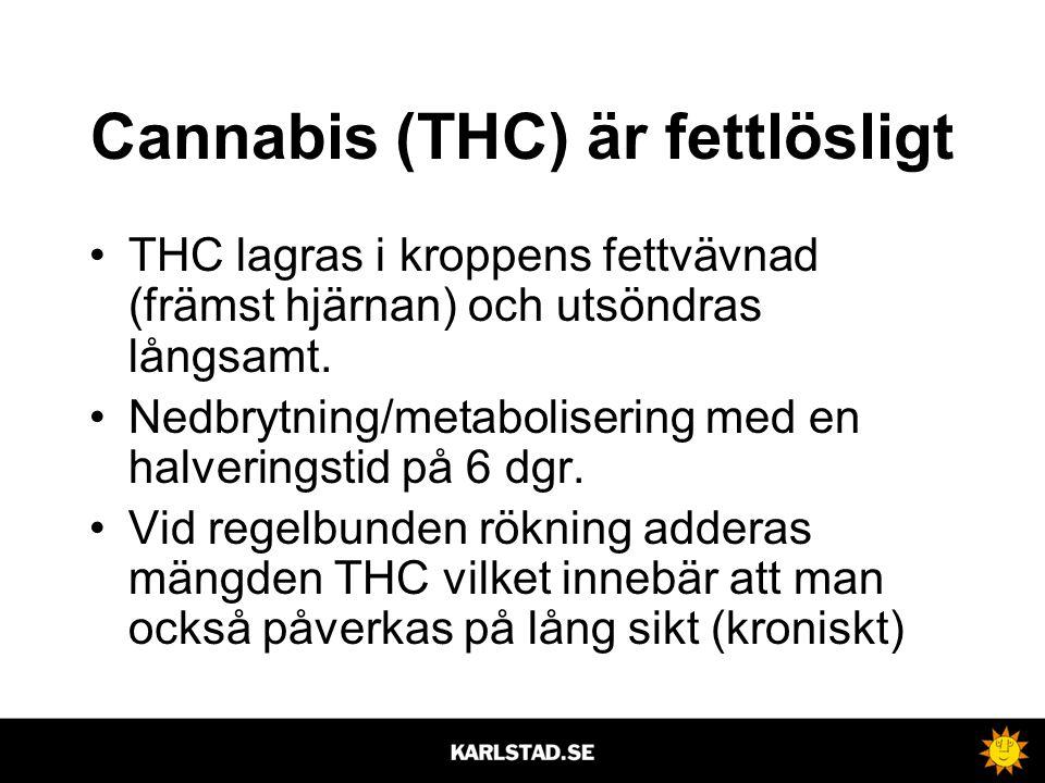 Cannabis (THC) är fettlösligt