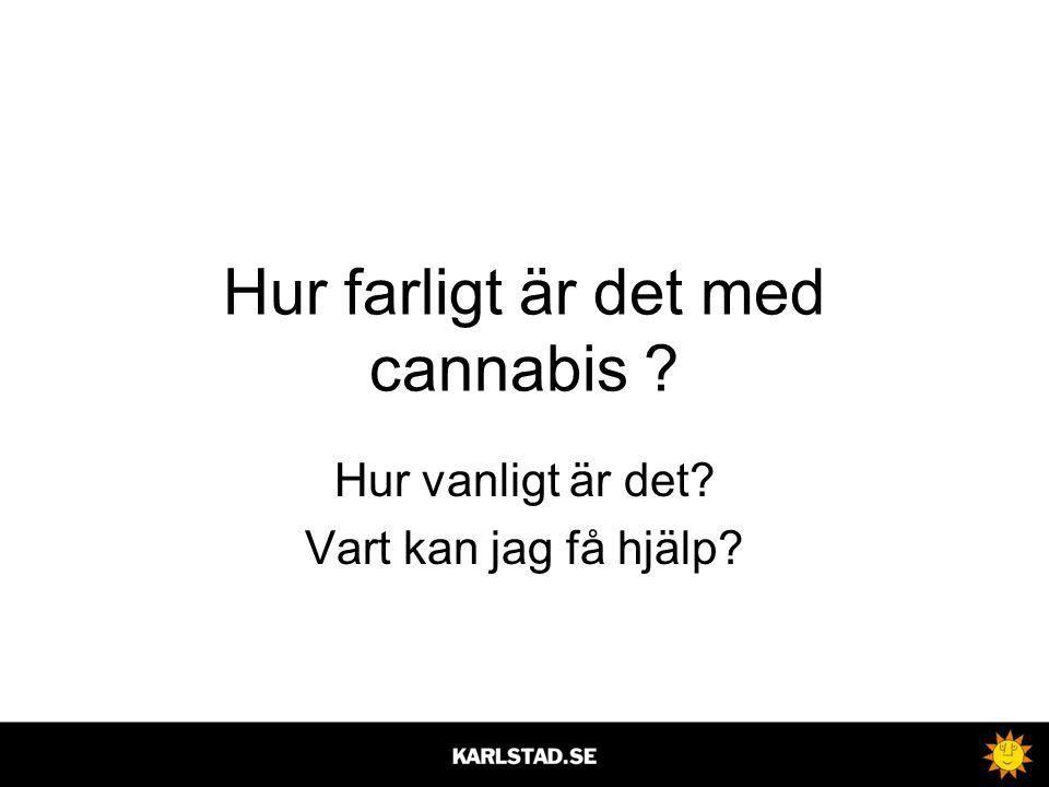 Hur farligt är det med cannabis