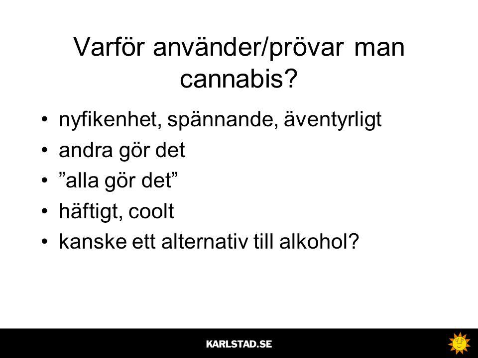 Varför använder/prövar man cannabis
