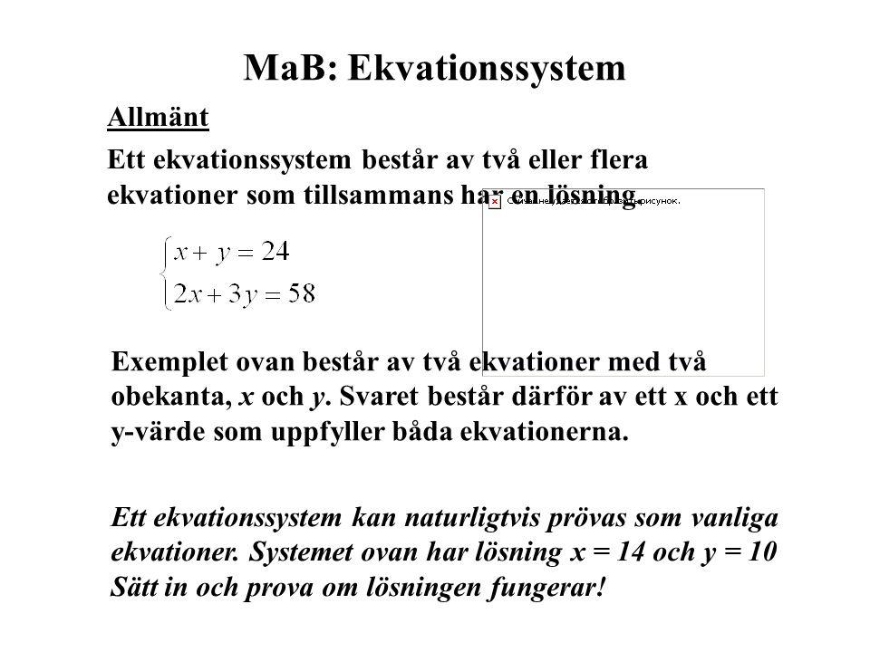 MaB: Ekvationssystem Allmänt