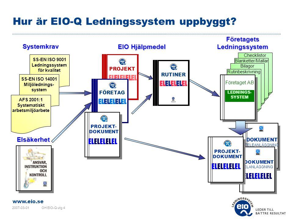 Hur är EIO-Q Ledningssystem uppbyggt