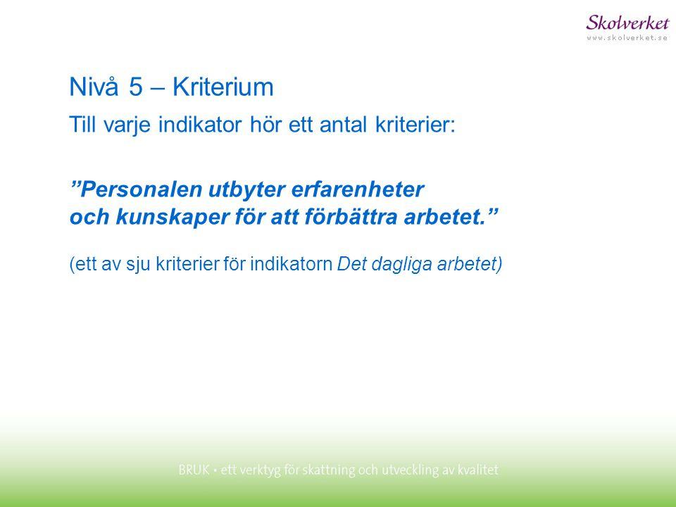 Nivå 5 – Kriterium Till varje indikator hör ett antal kriterier: