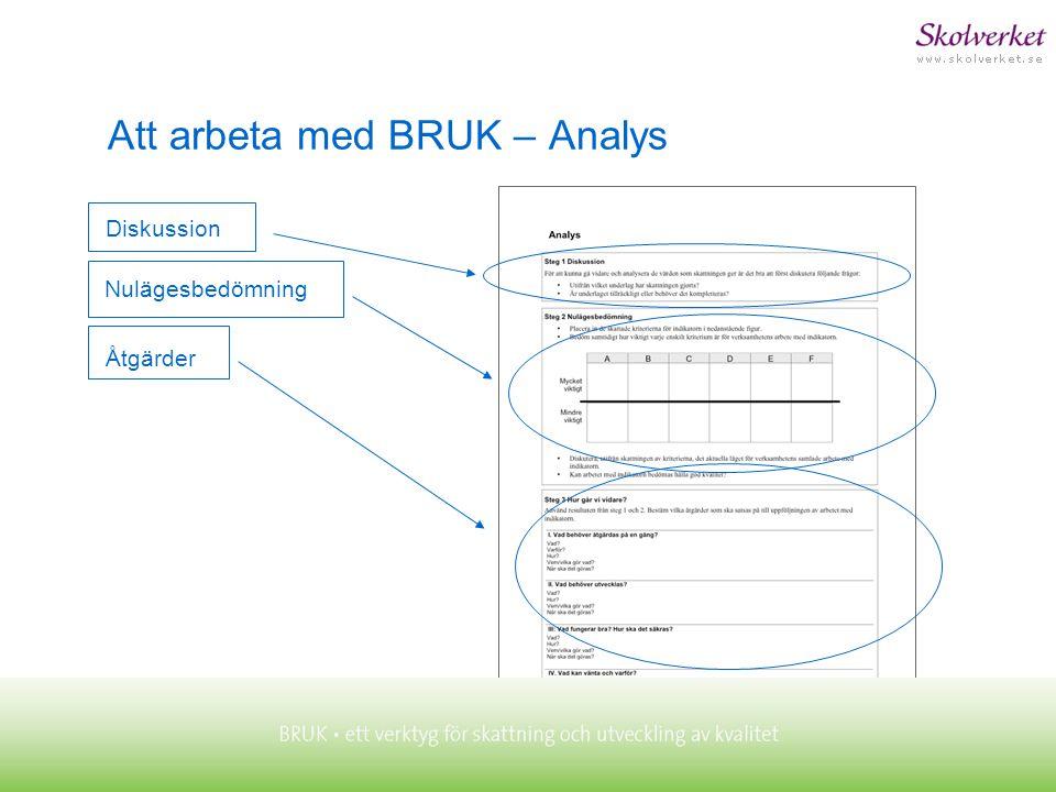Att arbeta med BRUK – Analys