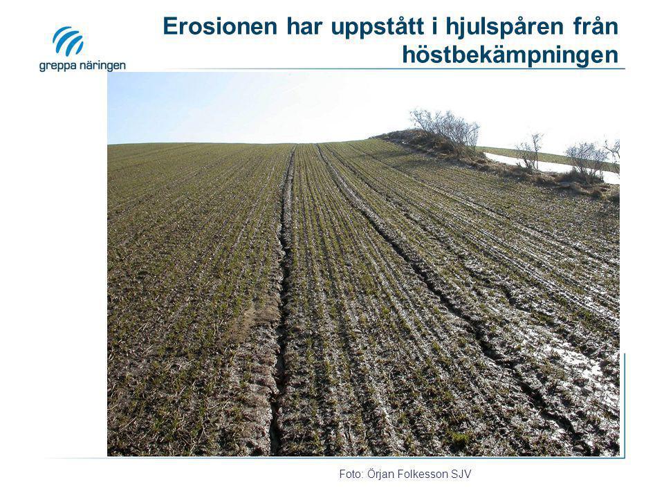Erosionen har uppstått i hjulspåren från höstbekämpningen
