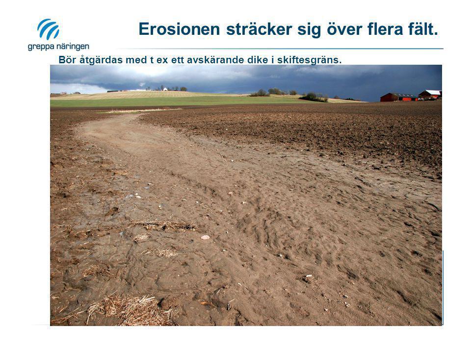 Erosionen sträcker sig över flera fält.
