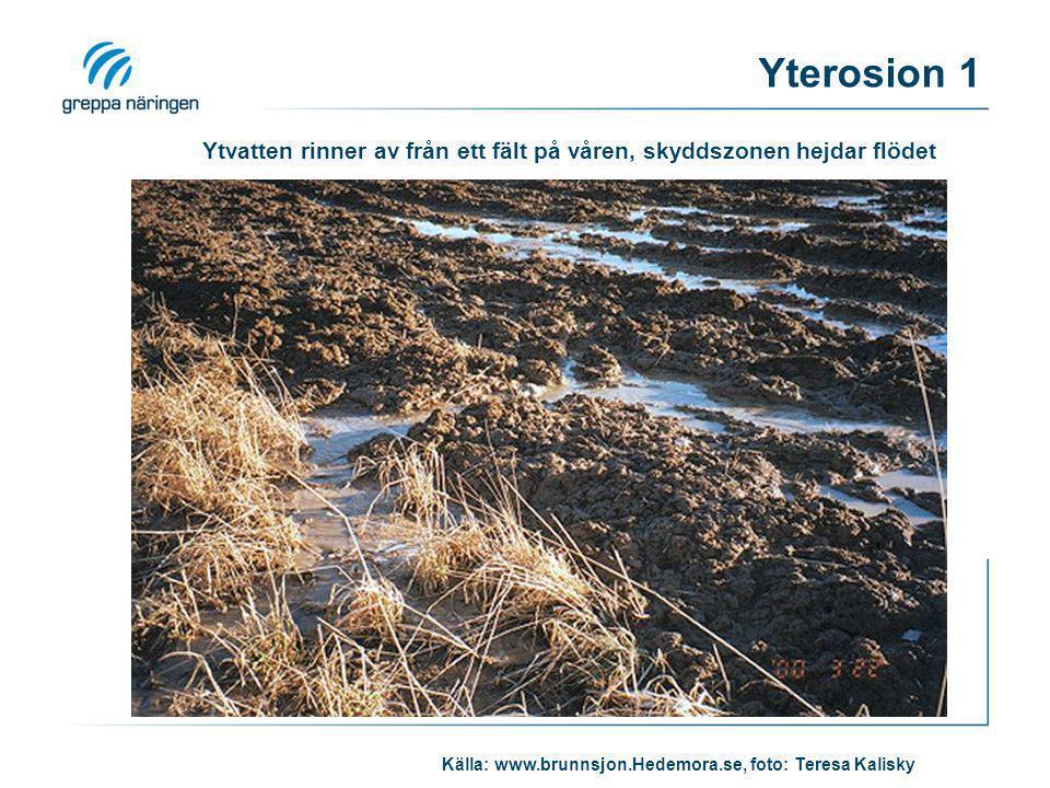 Ytvatten rinner av från ett fält på våren, skyddszonen hejdar flödet