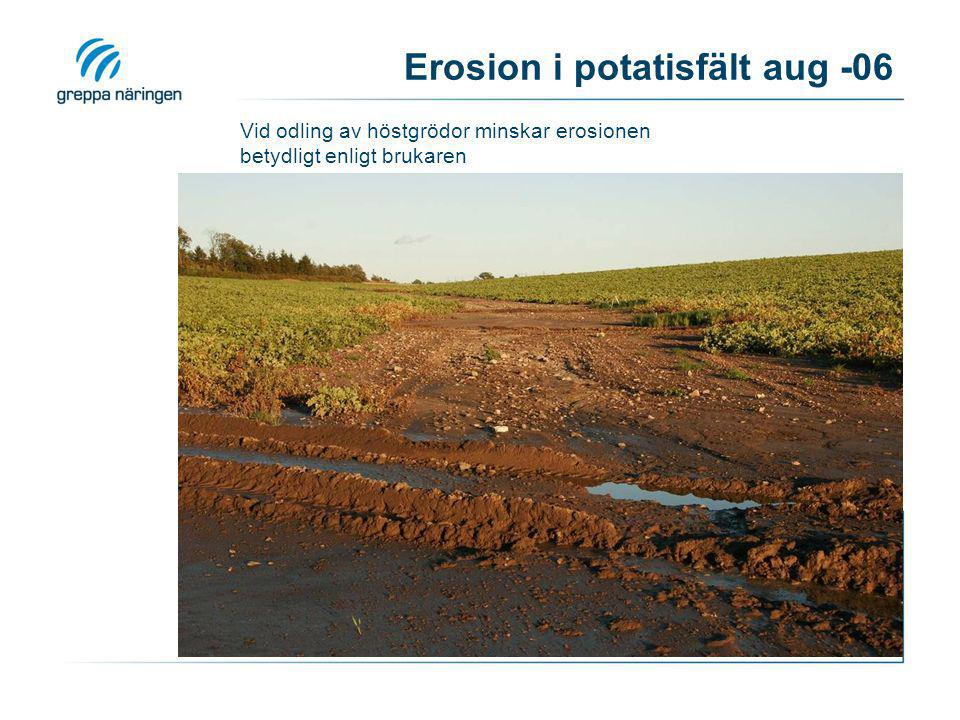 Erosion i potatisfält aug -06