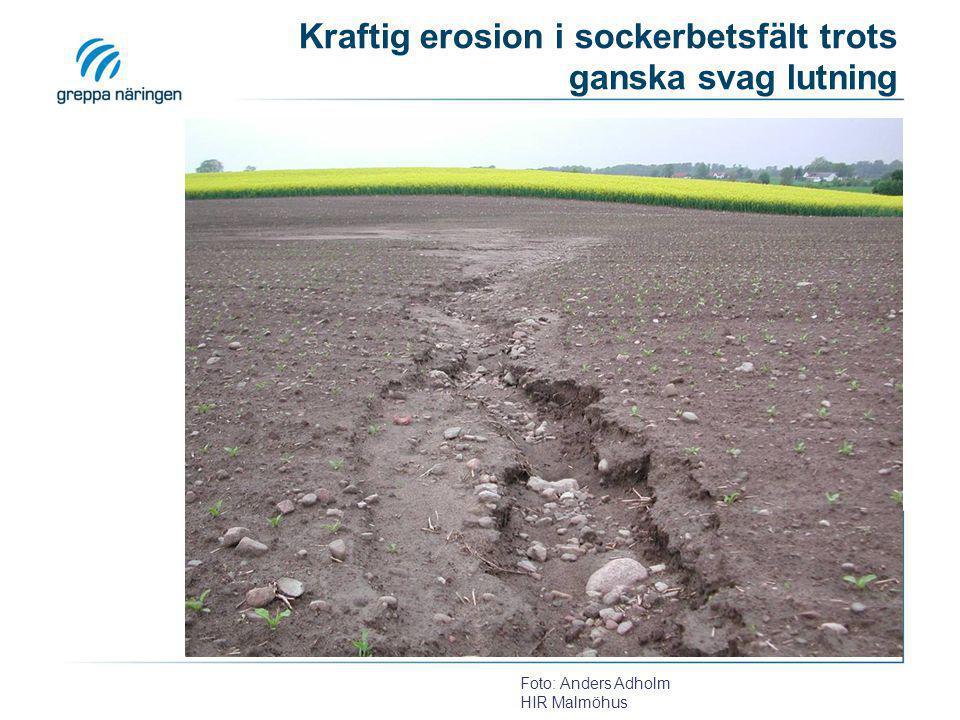 Kraftig erosion i sockerbetsfält trots ganska svag lutning