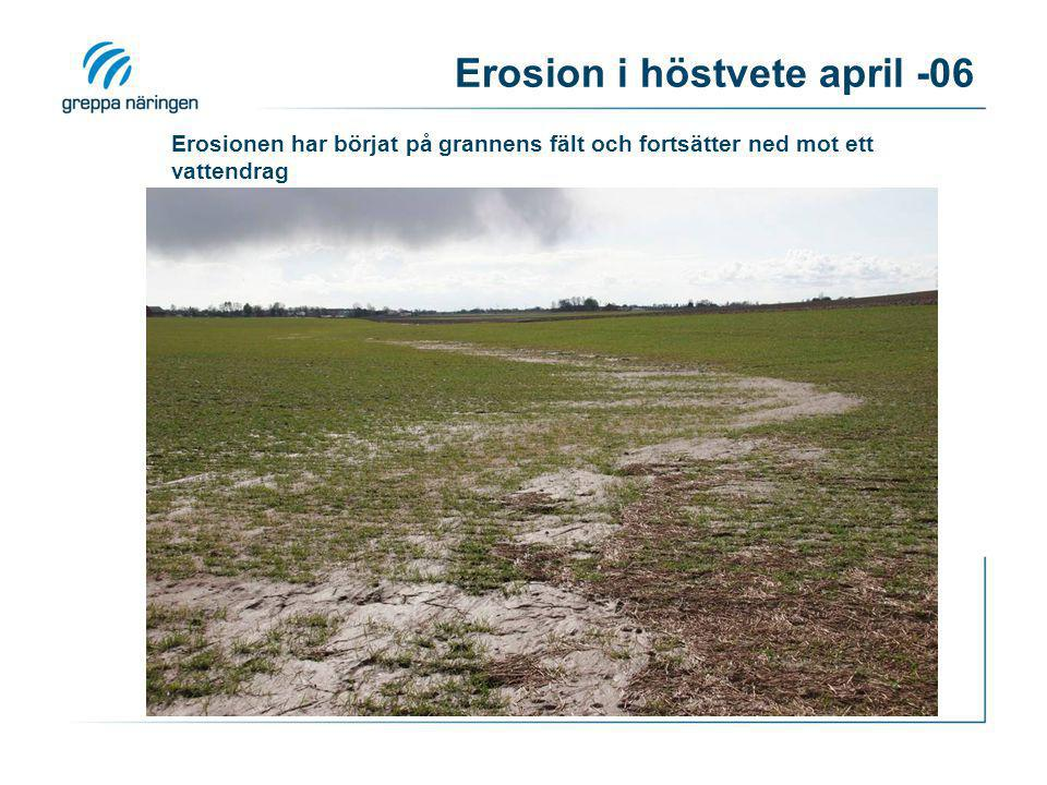 Erosion i höstvete april -06