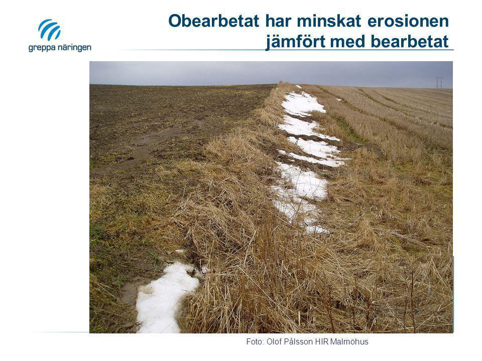 Obearbetat har minskat erosionen jämfört med bearbetat
