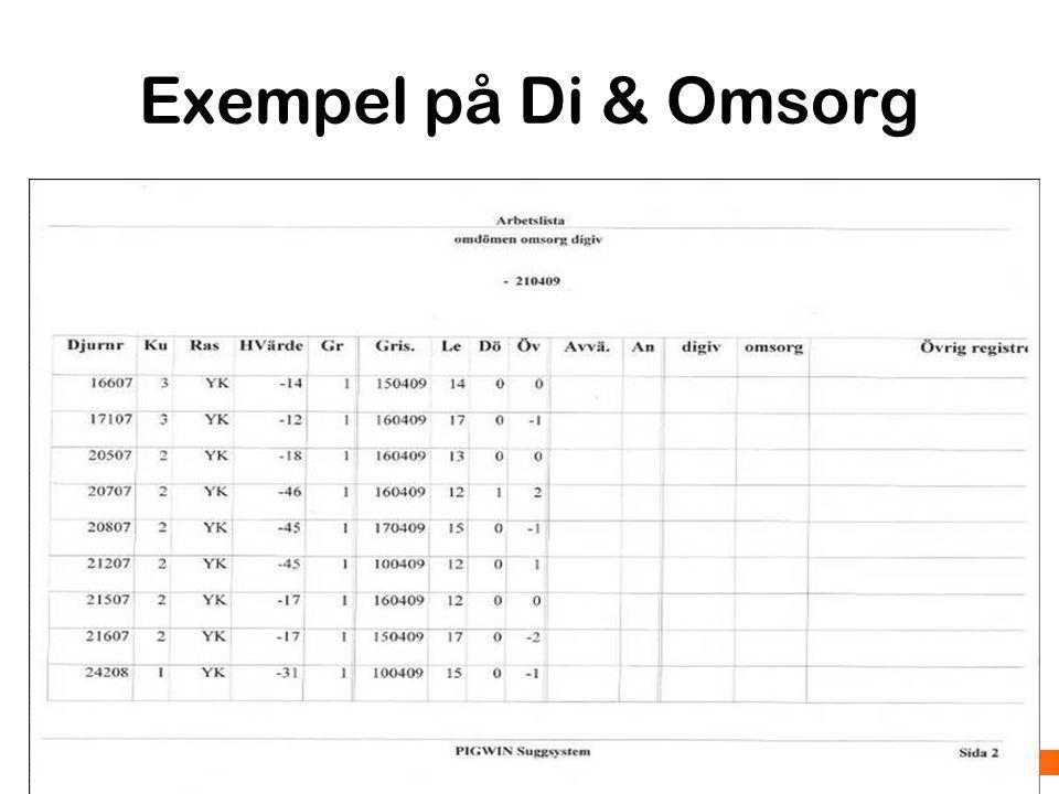 Exempel på Di & Omsorg