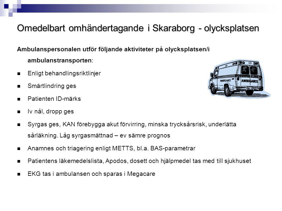 Omedelbart omhändertagande i Skaraborg - olycksplatsen