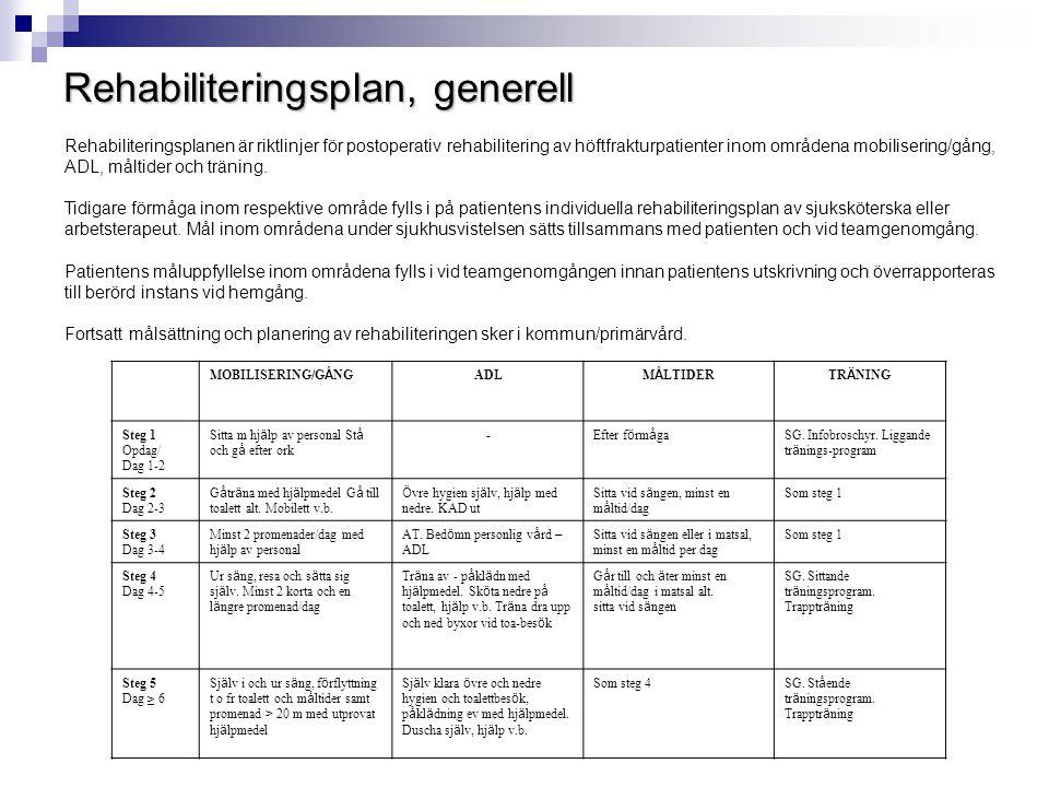 Rehabiliteringsplan, generell