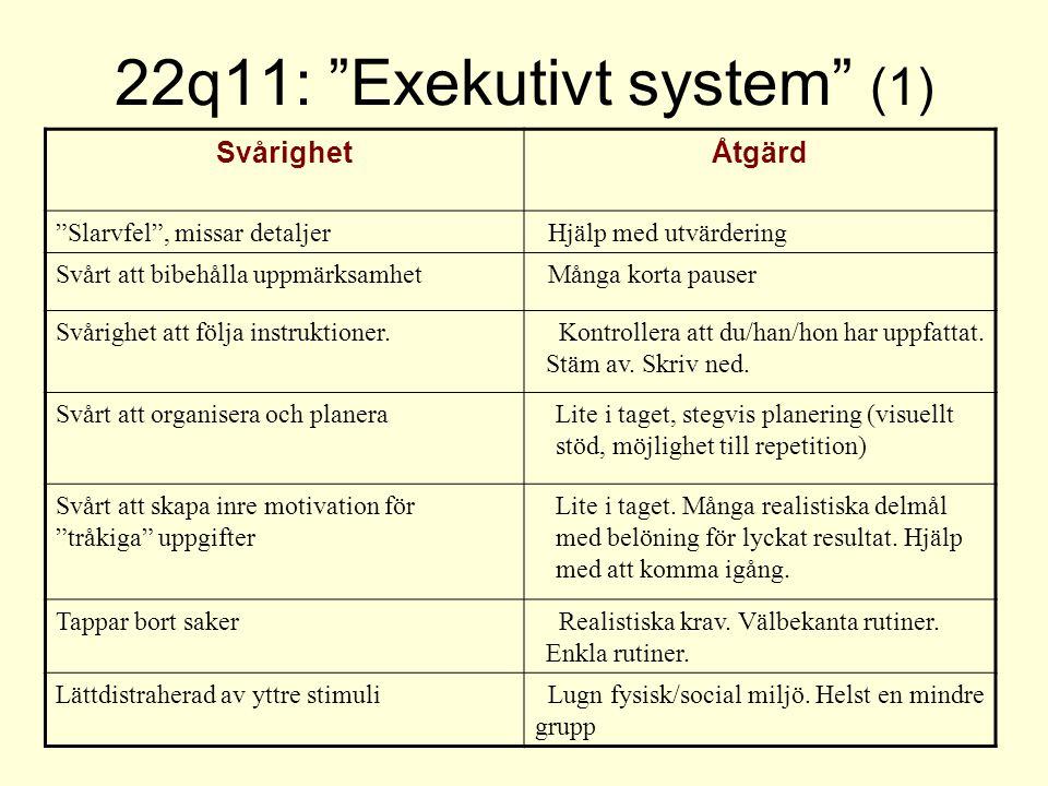 22q11: Exekutivt system (1)
