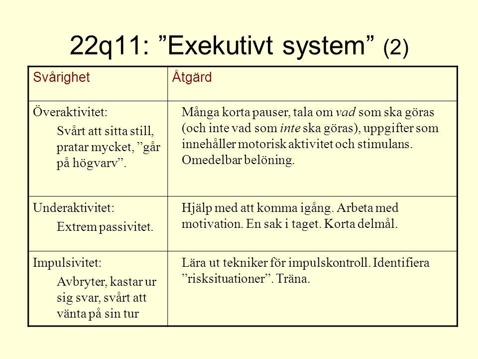 22q11: Exekutivt system (2)
