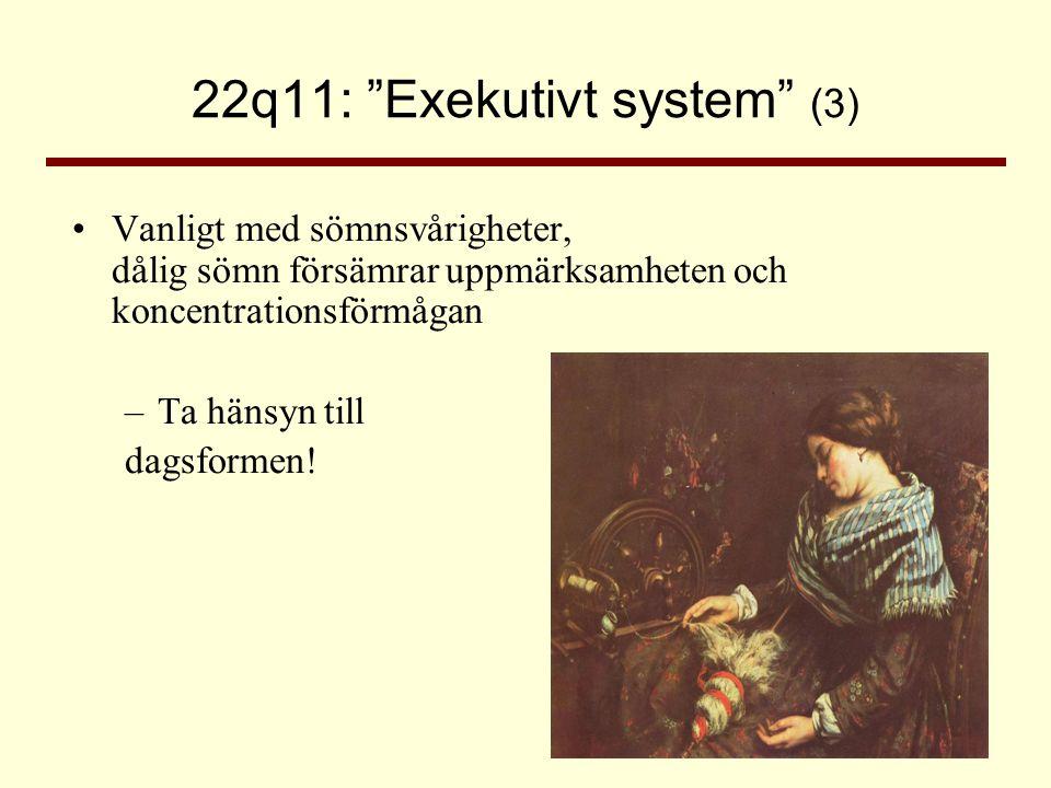 22q11: Exekutivt system (3)